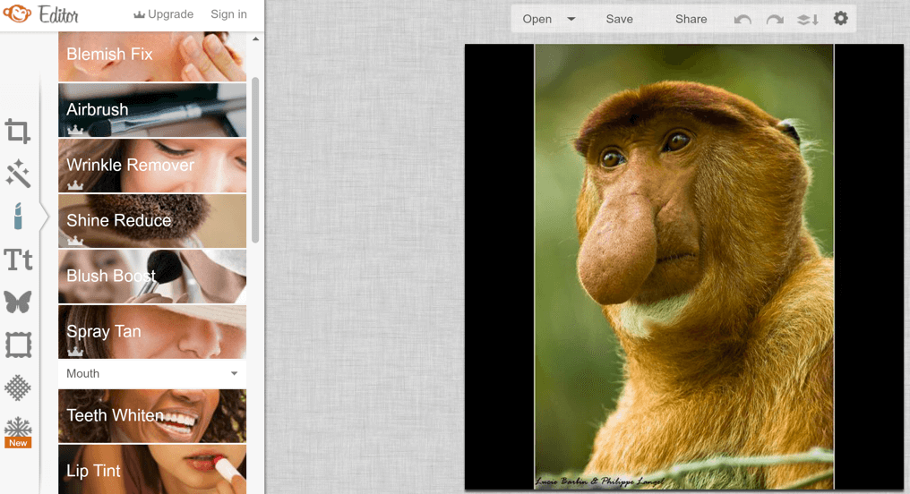 PicMonkey gives you tons of options for editing and touching up your photos.