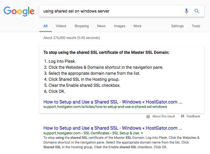 Well executed SEO rewarded Hostgator with the first two SERP slots including the snippet spot and a video result.