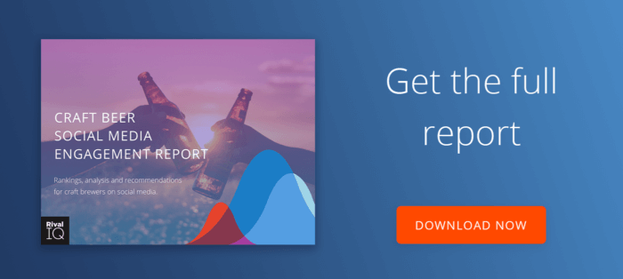 Download the Craft Beer Report