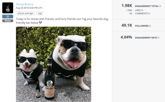 Two dogs next to a bottle of Fernet