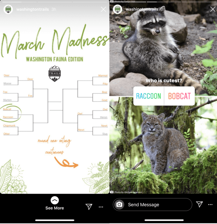 Washington Trails Association uses one of our favorite Instagram Stories best practices in this interactive quiz about cutest fauna