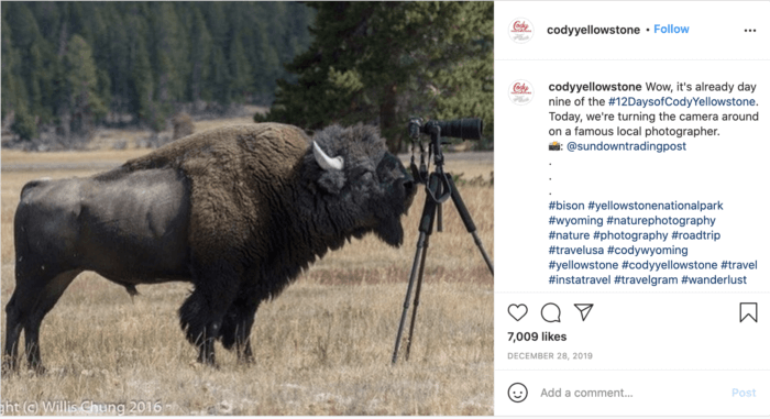 This example of engaging travel social media from Cody Yellowstone features a bison looking through a camera