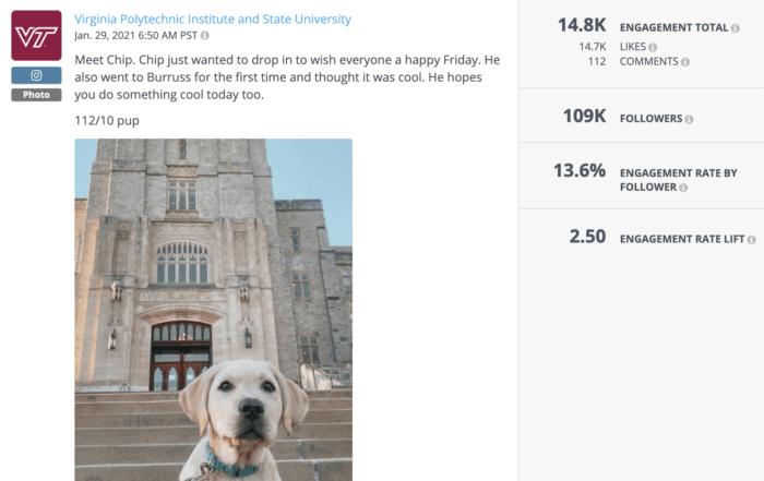 A cute dog in front of a Virginia Tech landmark